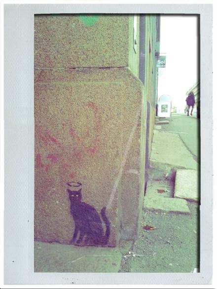 Svarte katter i Markveien