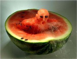 Vannmelonsvømmer